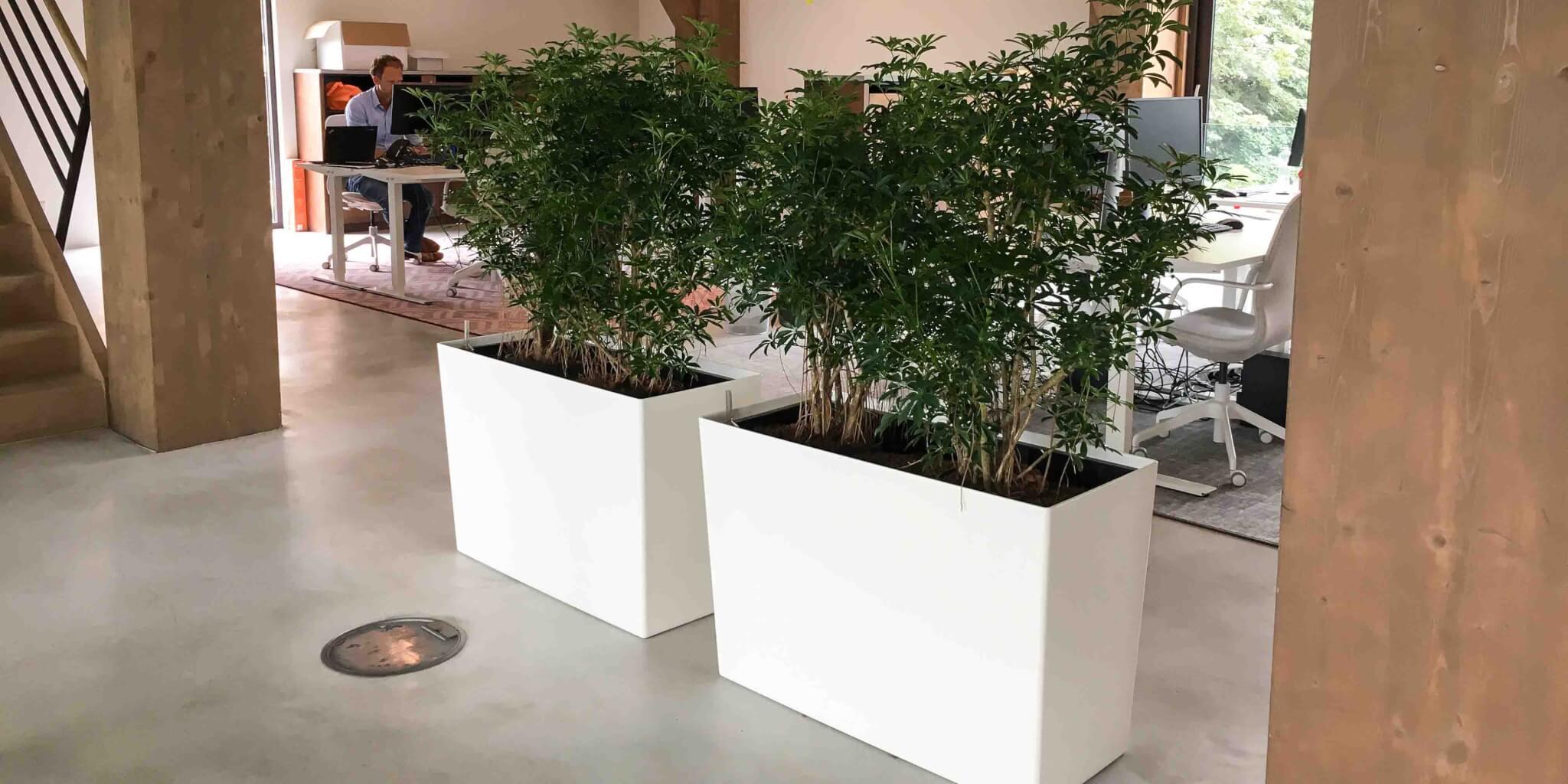 Interieurbeplanting Utrecht