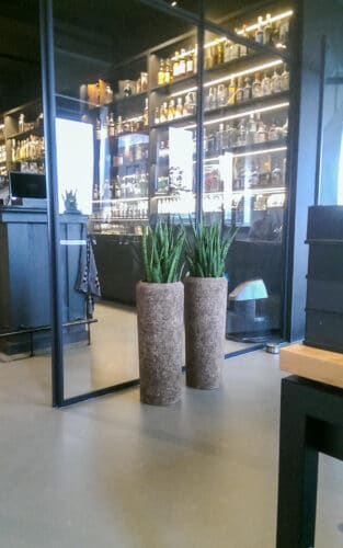 Interieurbeplanting Amsterdam