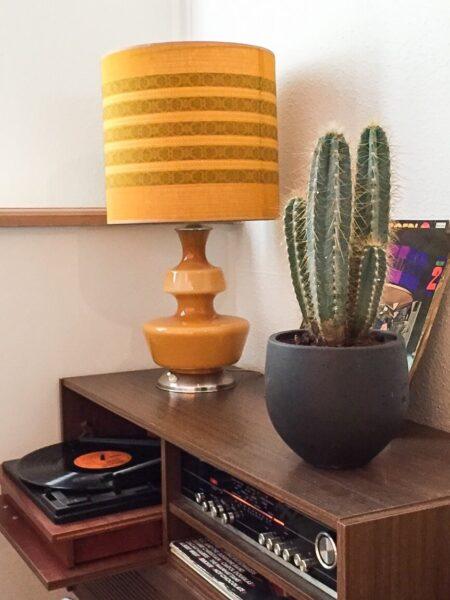 Cactus in composiet plantenbak