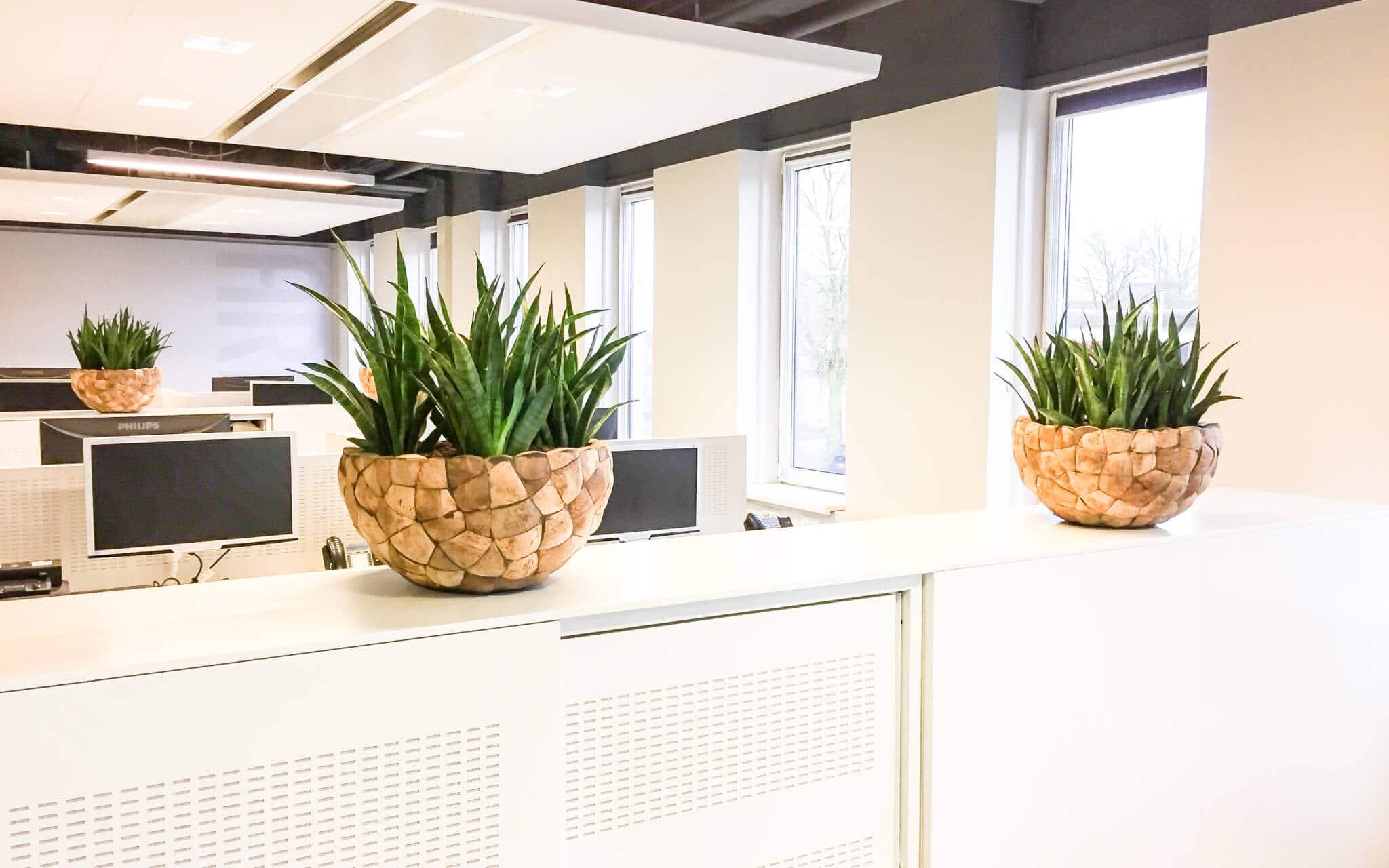 gezond kantoor