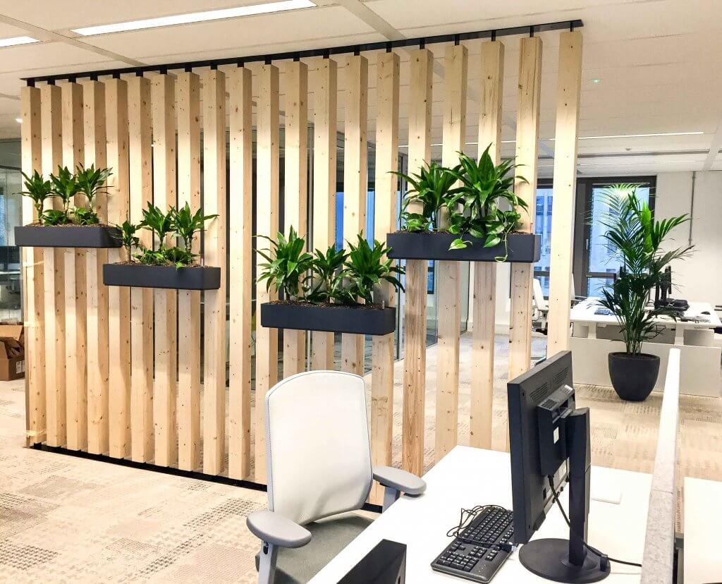 Planten Op Kantoor : Kantoorplanten hoogendoorn projectbeplanting
