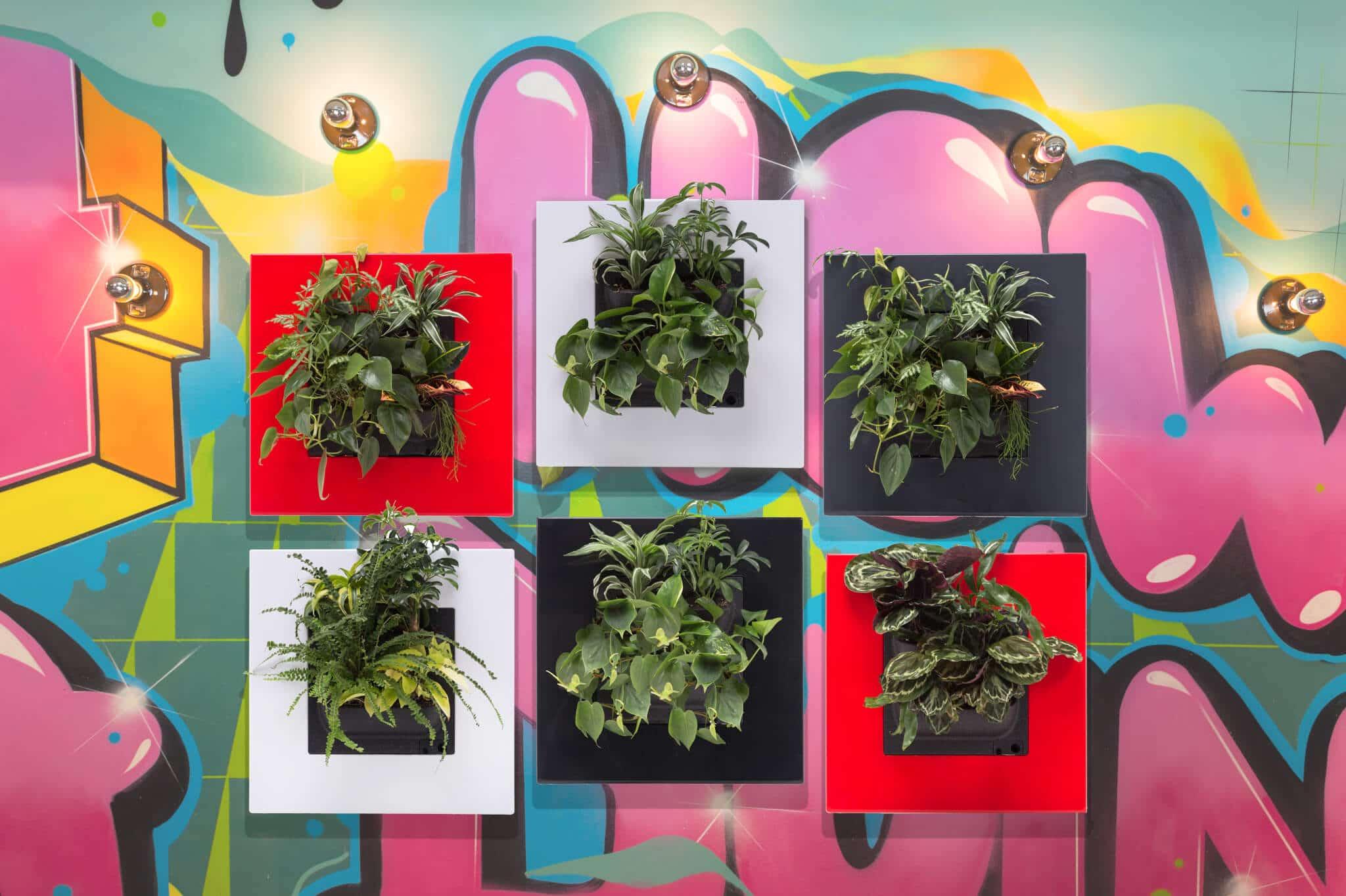 Planten schilderij
