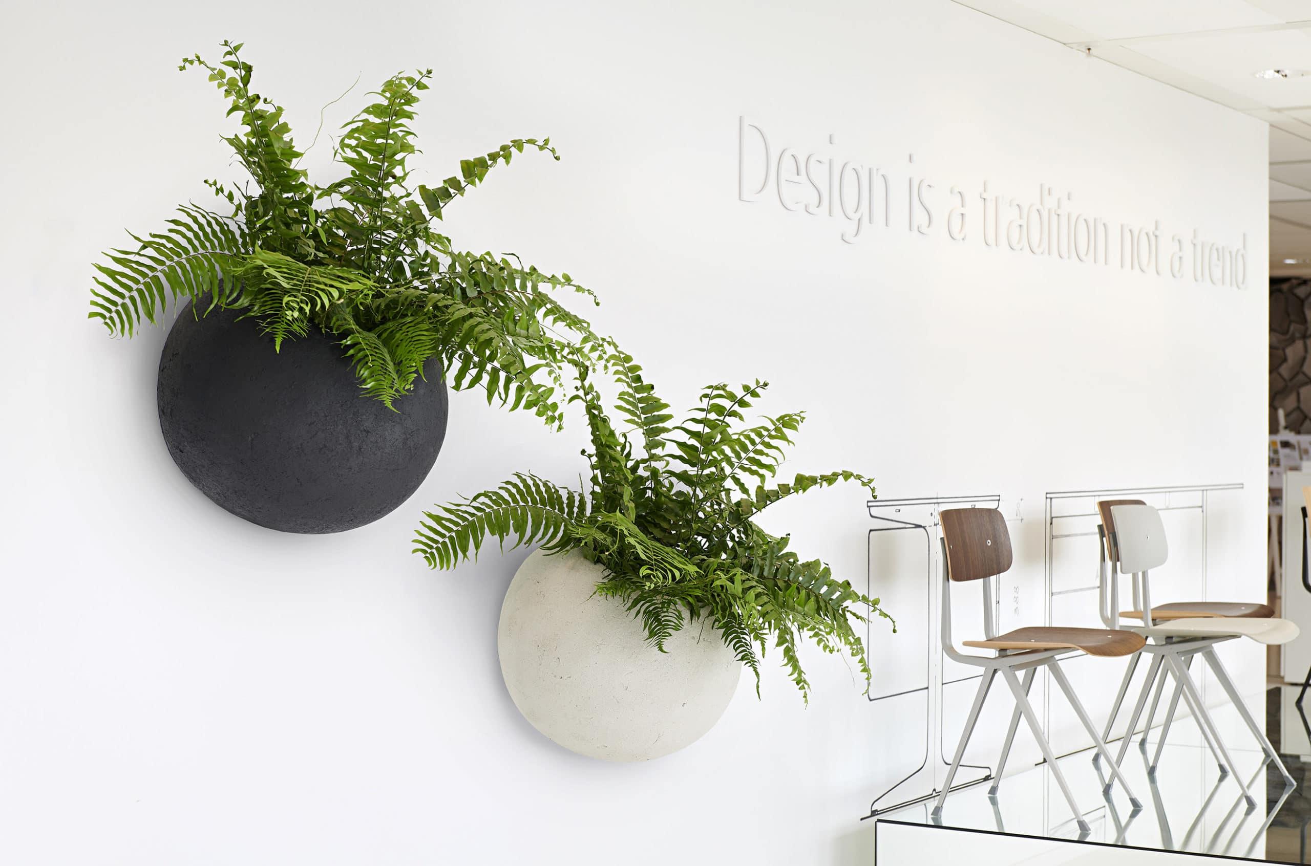 plantenbak aan de muur