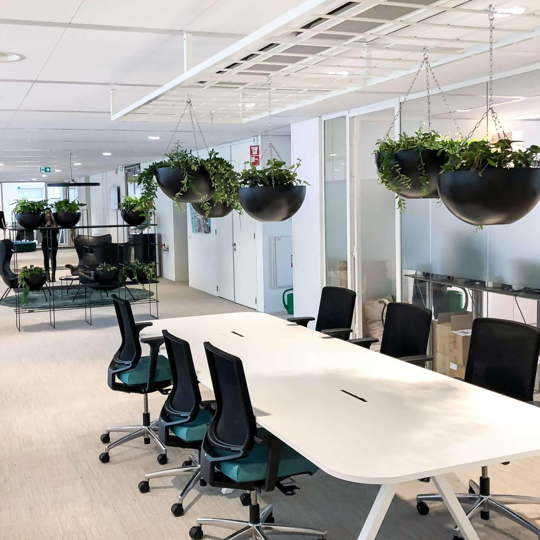Zwarte hangbakken voor planten