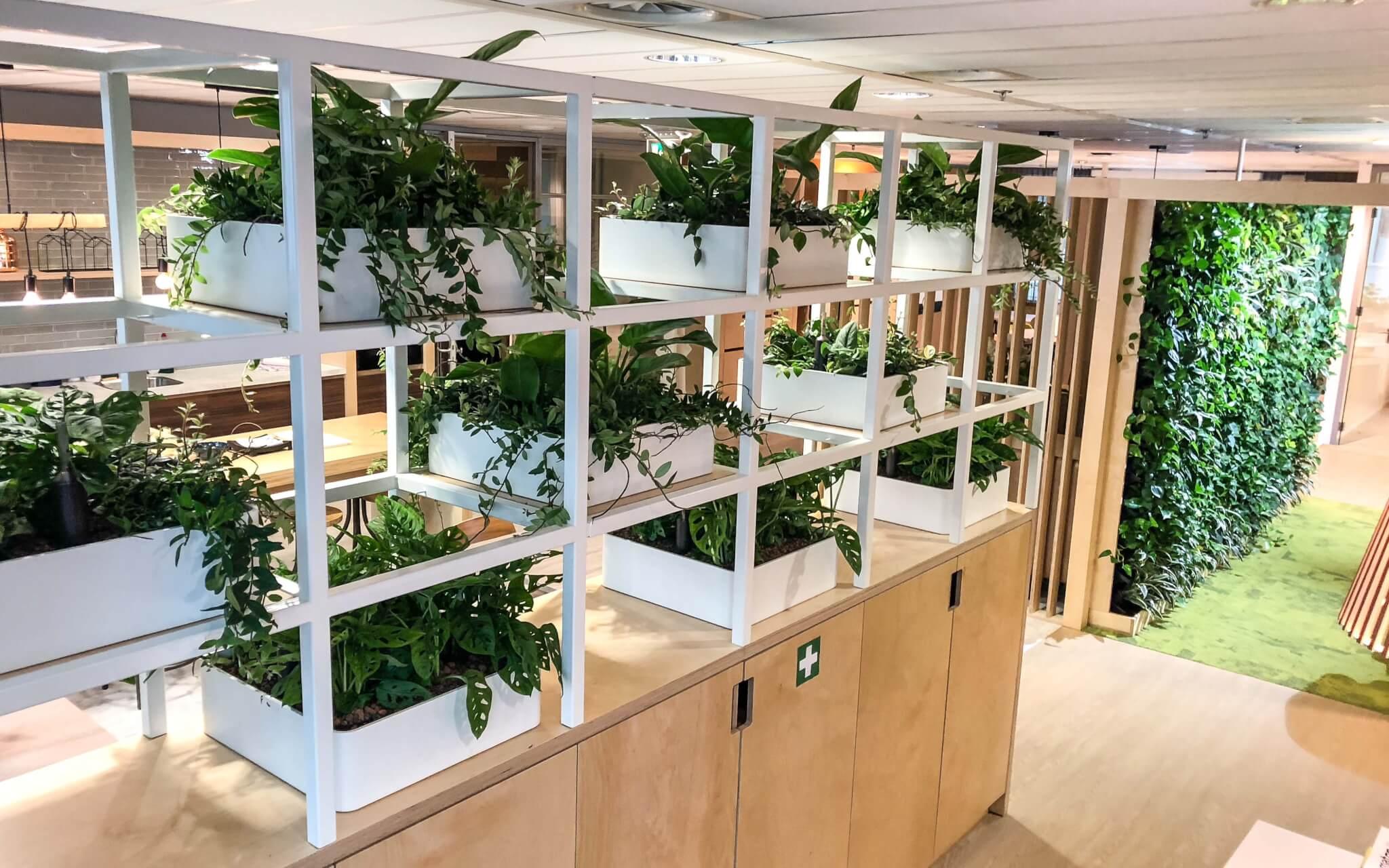 Plantenwand Amsterdam