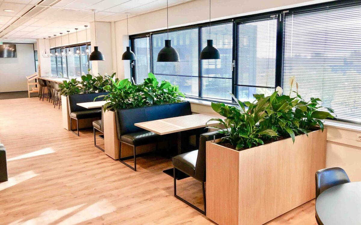Planten in restaurant