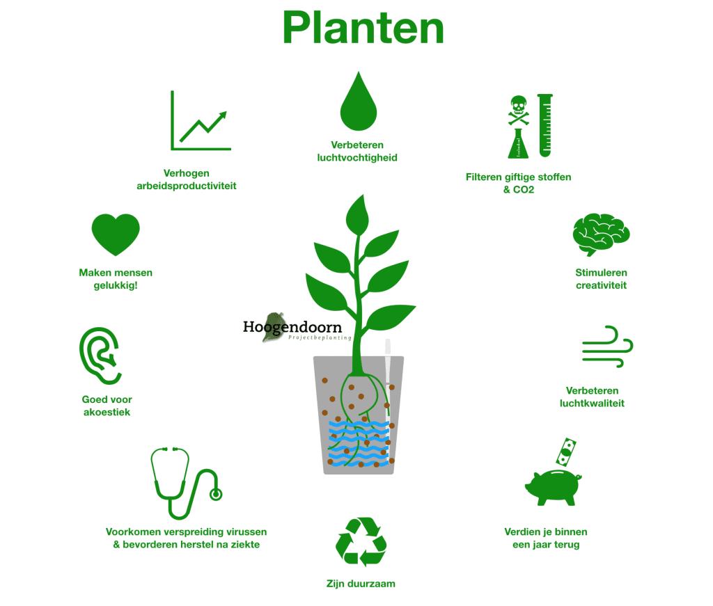 Infographic effect van groen op kantoor
