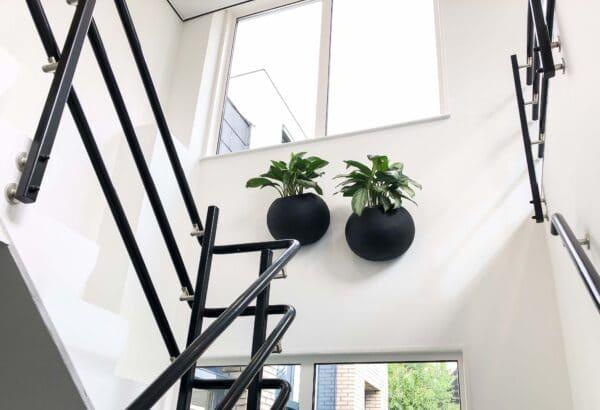 Zwarte plantenbakken voor aan de muur
