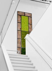 Biomontage boven de trap