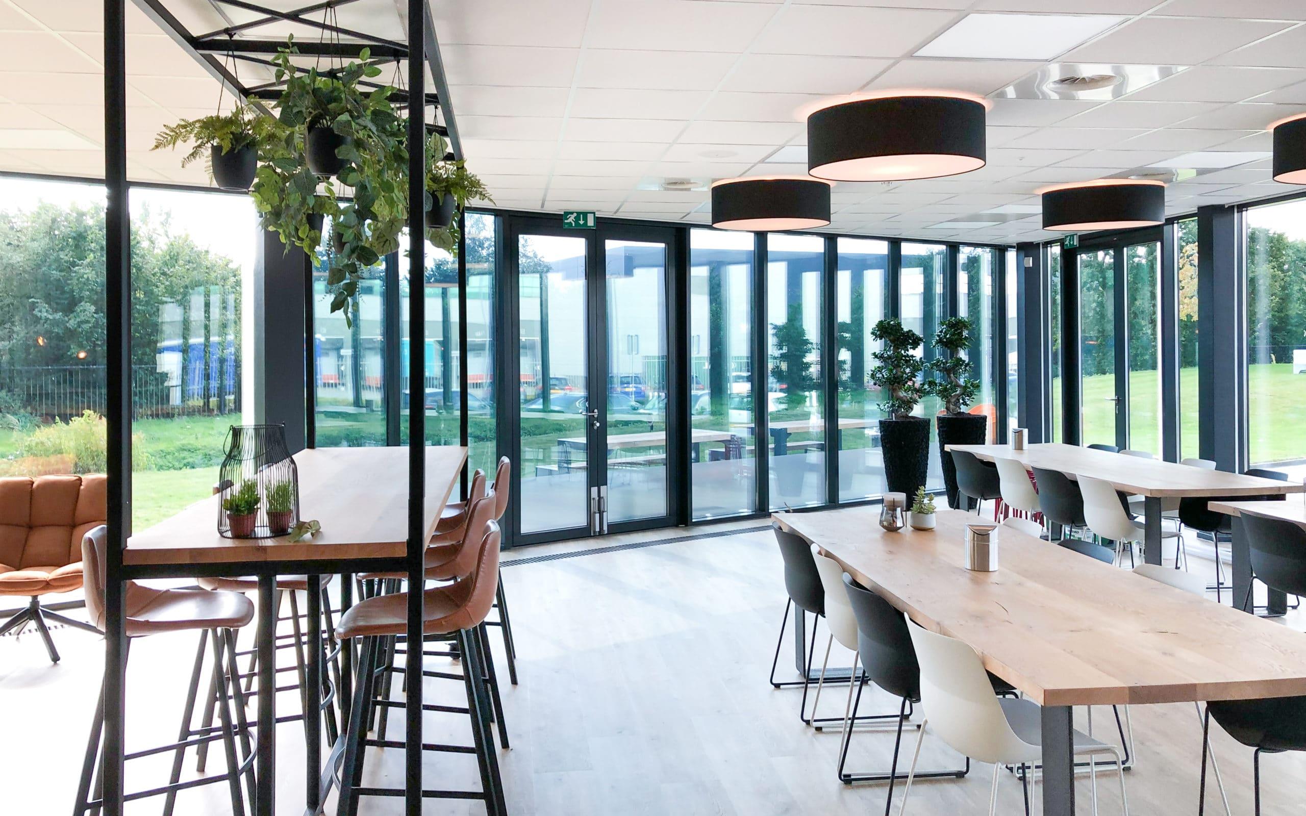 kantoorbeplanting zwarte lava plantenbak met ficus en hangplanten groene werkplek