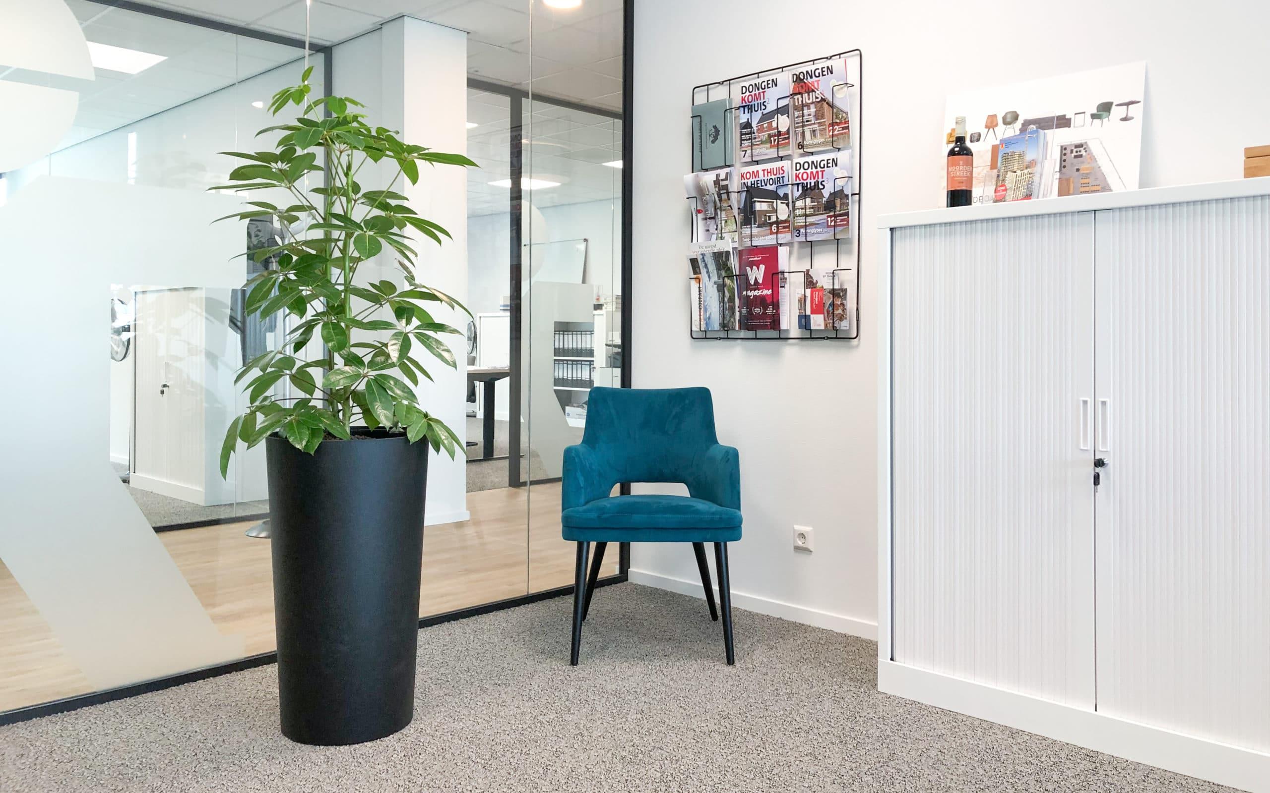 groene werkplek kantoorbeplanting schefflera amate in zwarte plantenbak bij Van de Ven