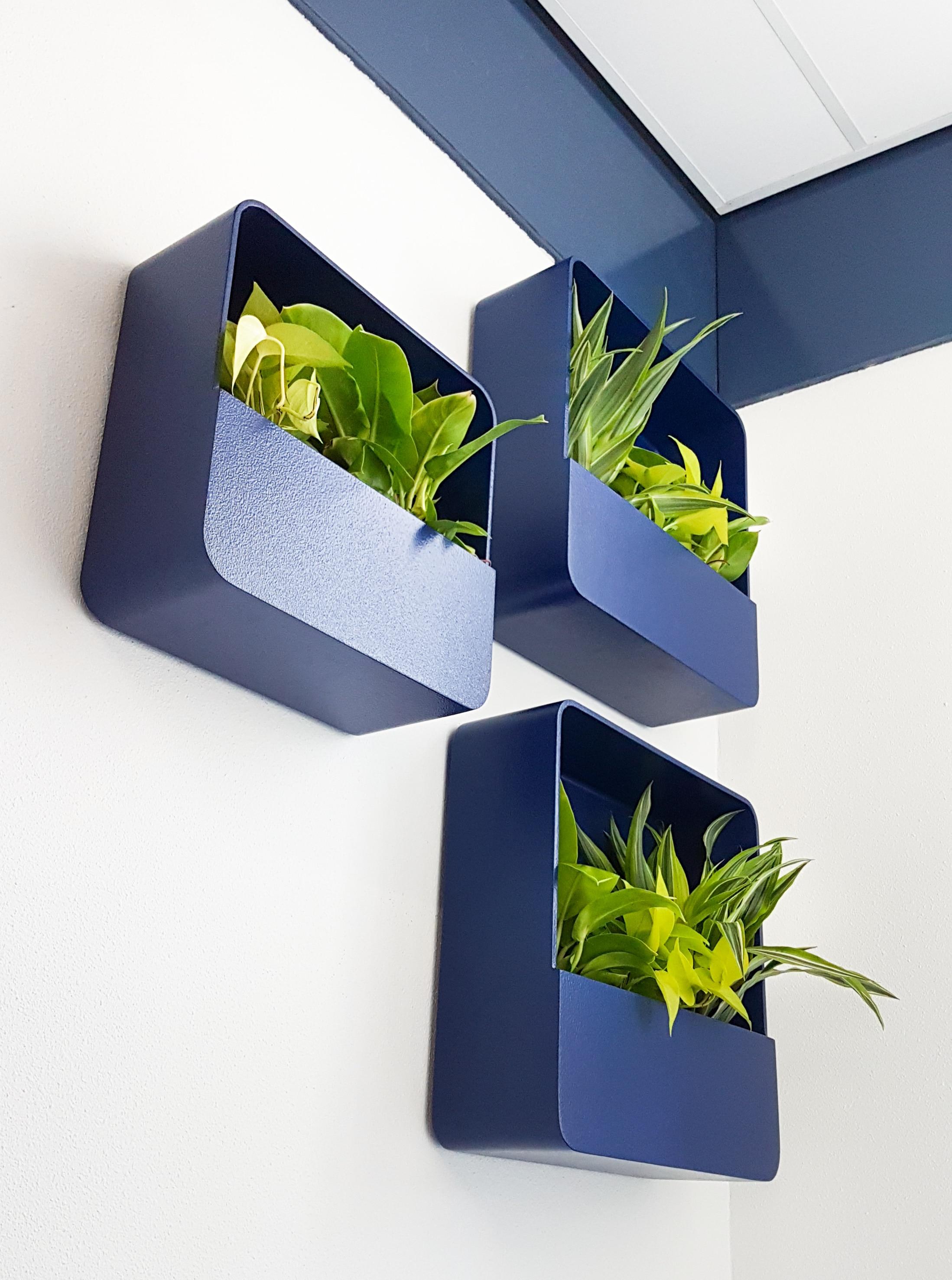 wall planter blauw vierkant retro green wall