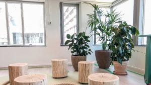 Trends kantoorbeplanting