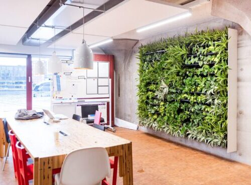 plantenwand met luchtzuiverende planten