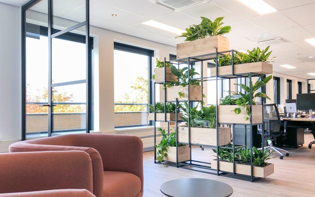 Interieurbeplanting plantenkast