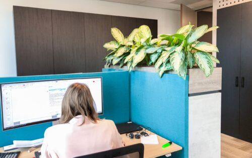 Groen op kantoor leasen of huren