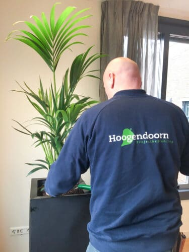Onderhoud door Hoogendoorn Projectbeplanting