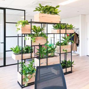 planten in kast