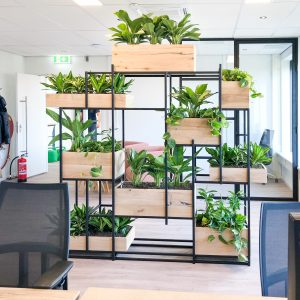 Plantenkast op kantoor