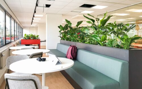Veel planten op kantoor