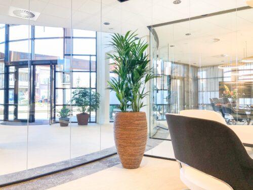 duurzame plantenbak voor kantoor