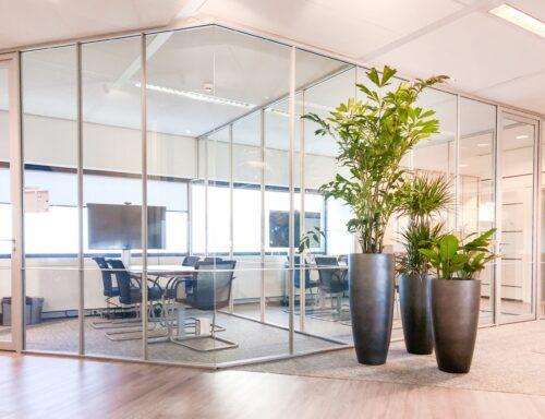 Plantengroep op kantoor interieurbeplanting
