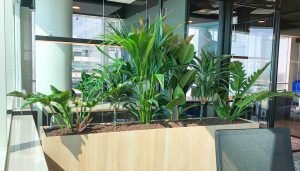 Roomdivider met beplanting