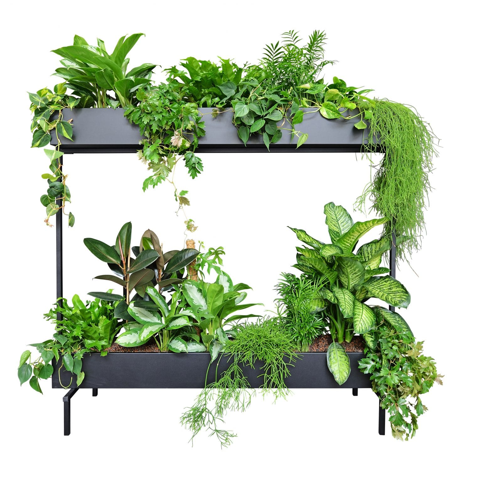 room divider met planten