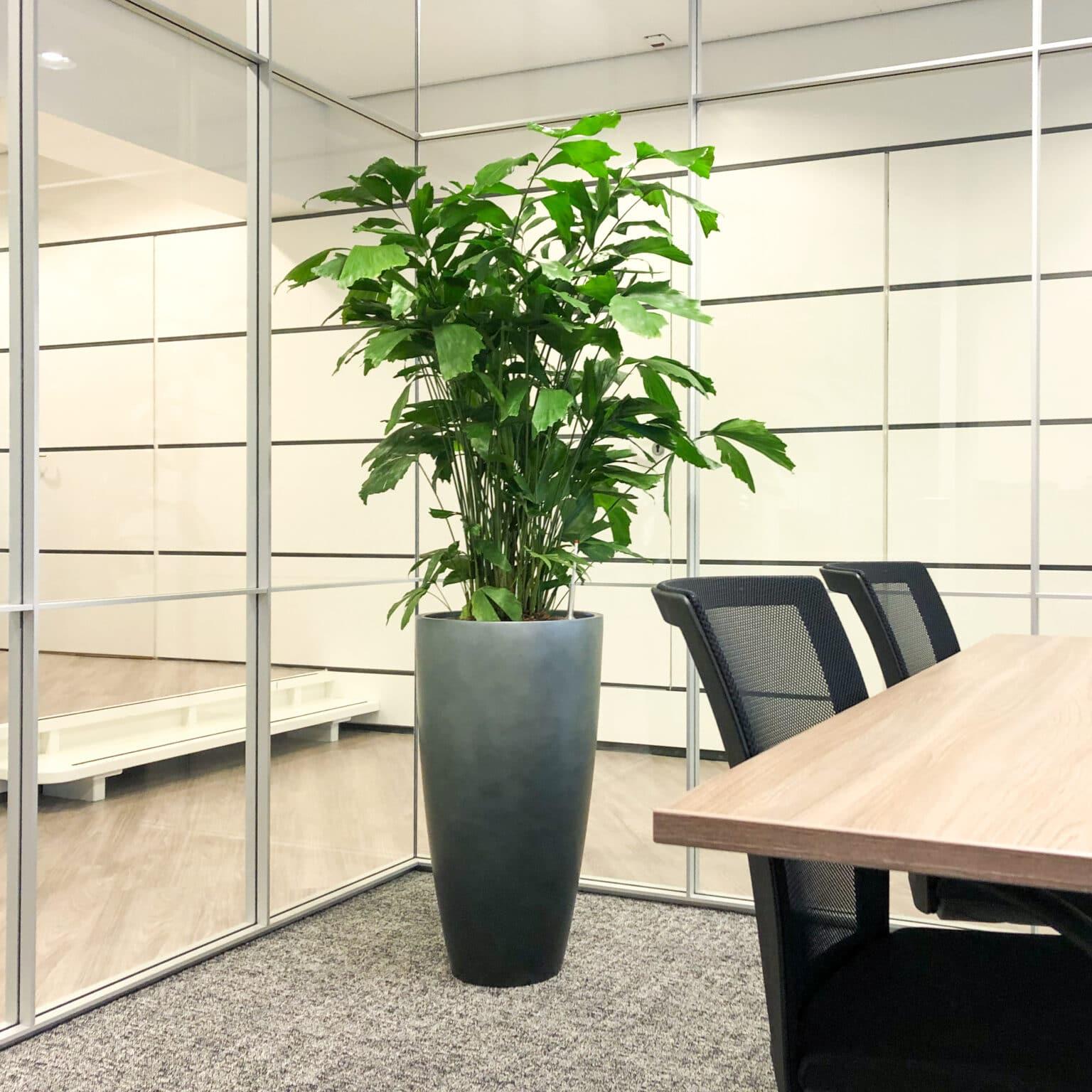 Stijlvolle plantenbak