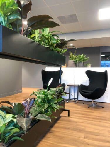 Roomdivider met planten in Leiden