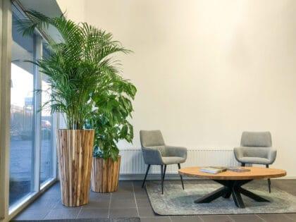 Licht houten plantenbak kantoortrends 2021