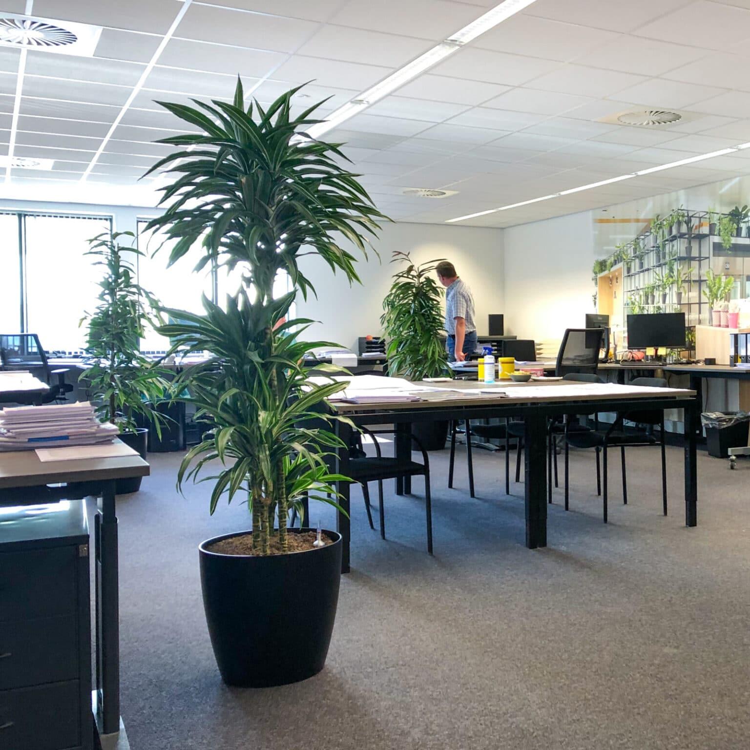 Groen kantoor in Doetinchem