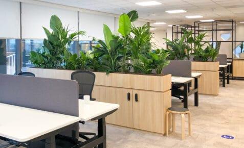 Houten roomdivider met planten op kantoor kantoortrend