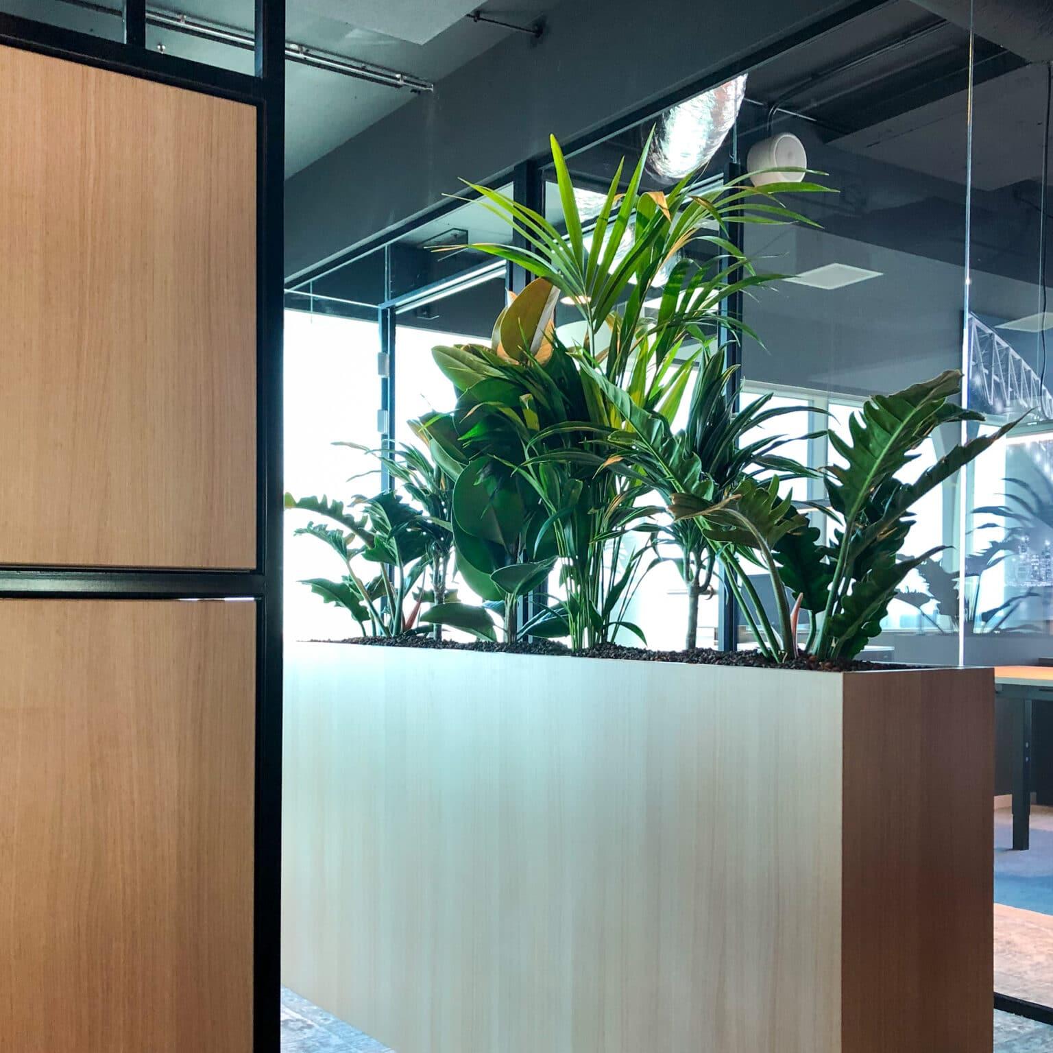 Houten roomdivider met planten