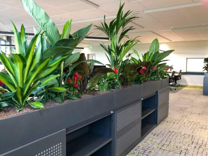 Roomdivider met planten Trends 2021