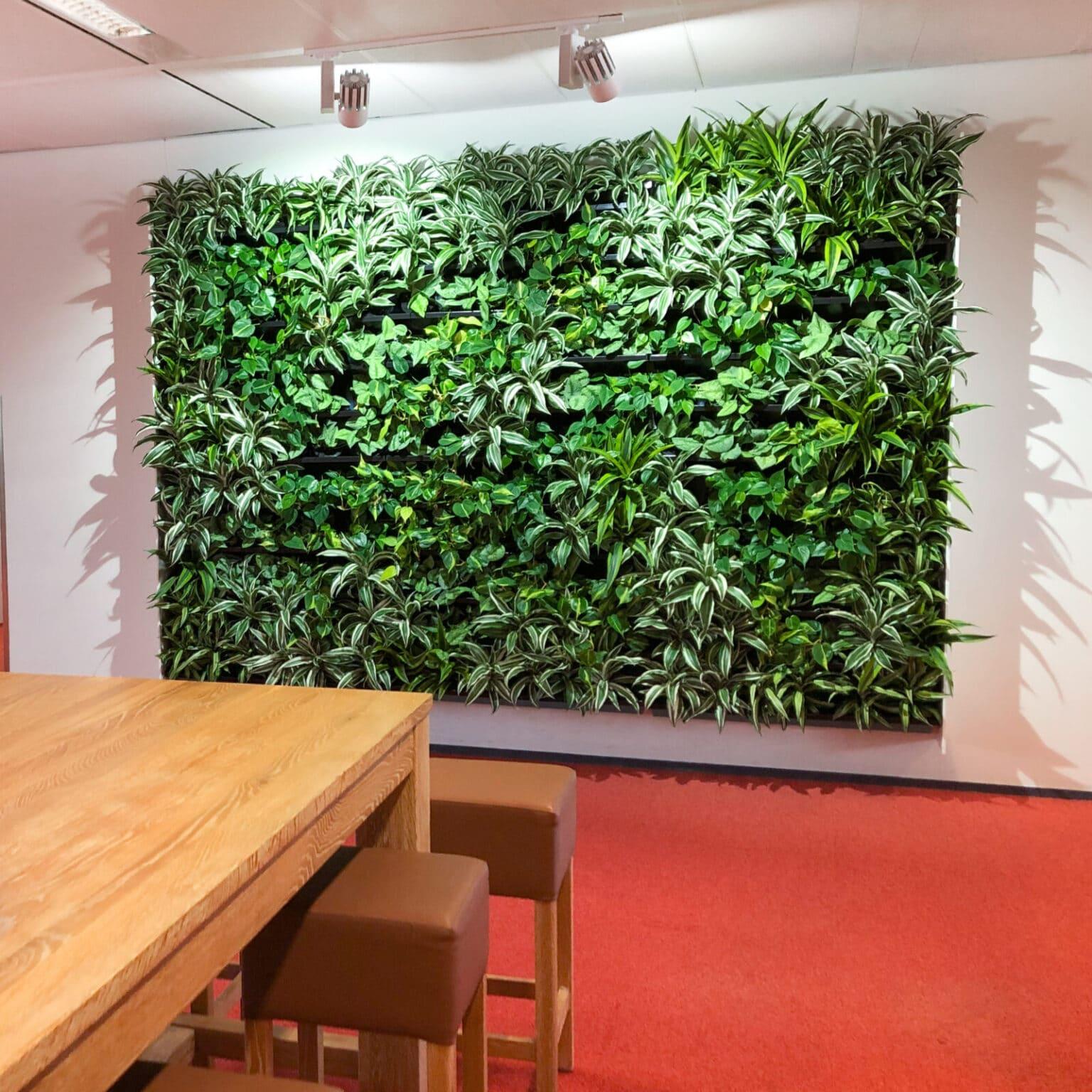 Groene wand op kantoor Doetinchem