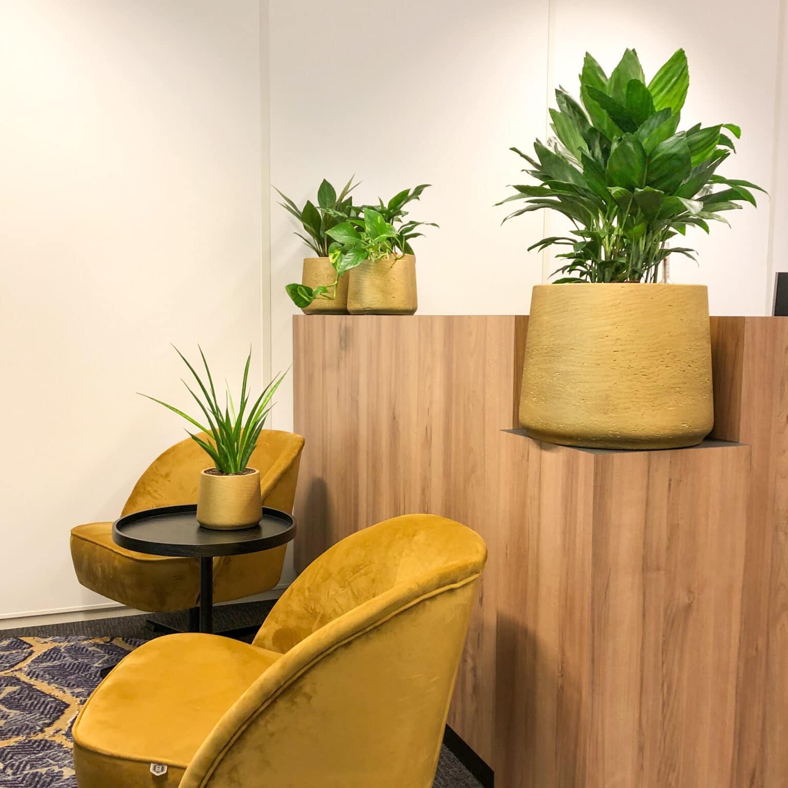 Geel kantoor interieur