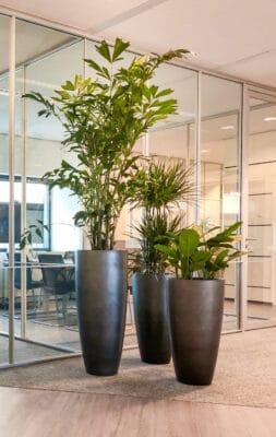 Kantoortrends 2021 Unieke plantenbakken op kantoor