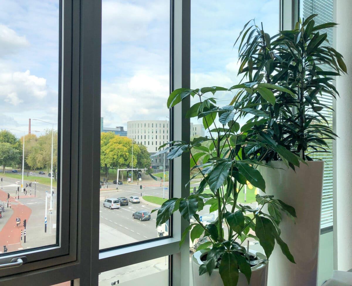Kantoorbeplanting Eindhoven