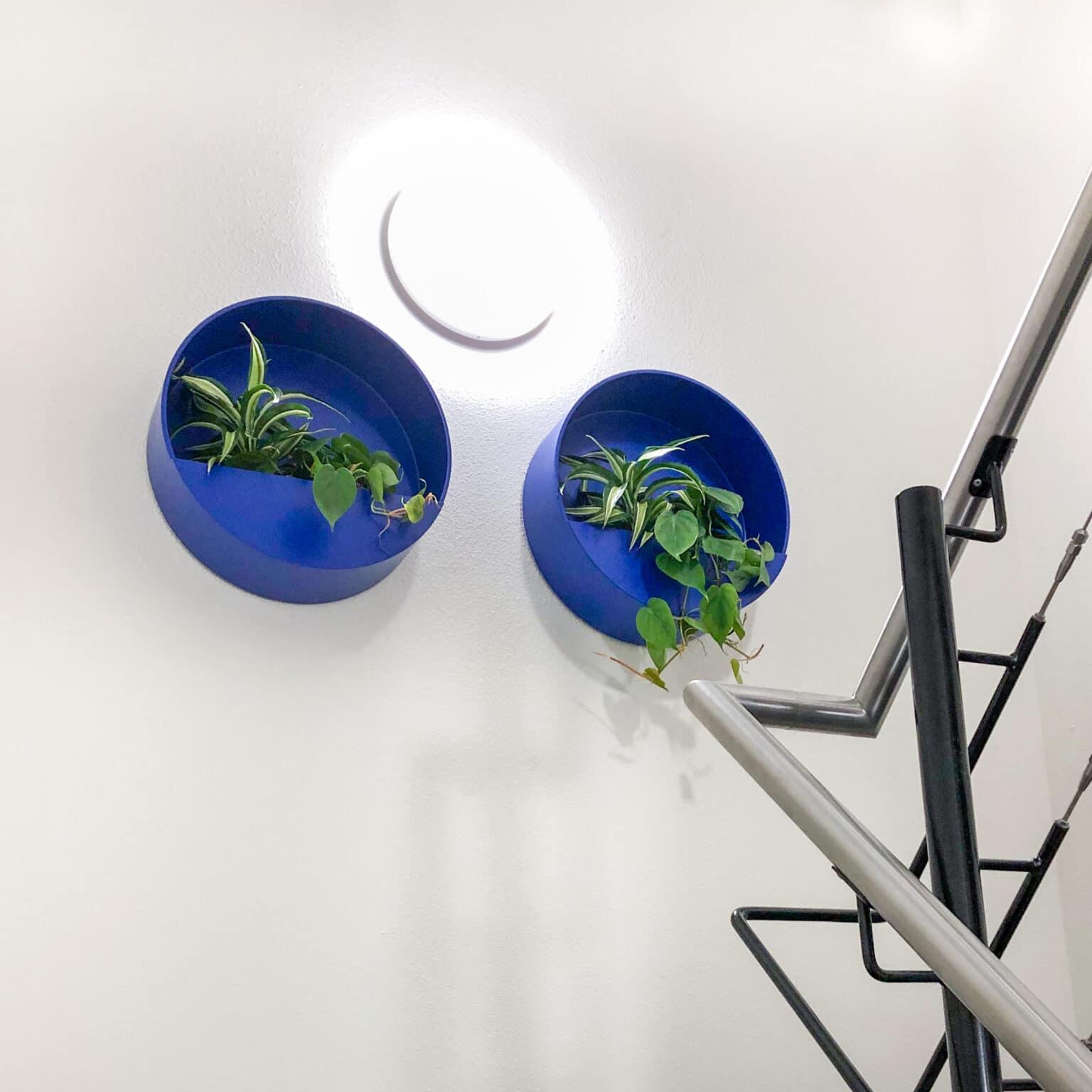 Blauwe wallplanters in Doetinchem