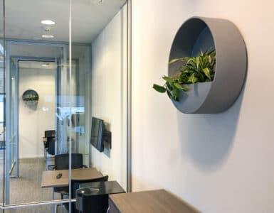 Grijze wallplanter trendkleur 2021