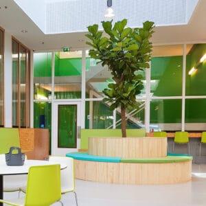 Grote boom op kantoor 2021 trends