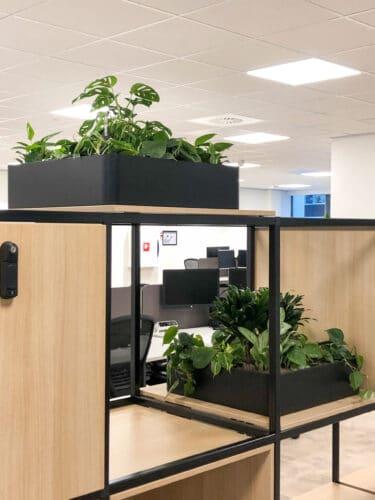 Mooie plantenbakken bij Link Asset Services