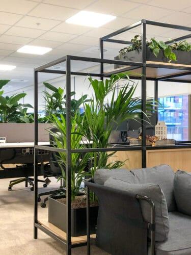 Zwarte moderne plantenbakken bij Link Asset Services