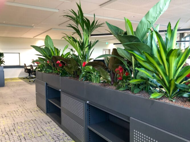 Urban jungle roomdivider bij VSE