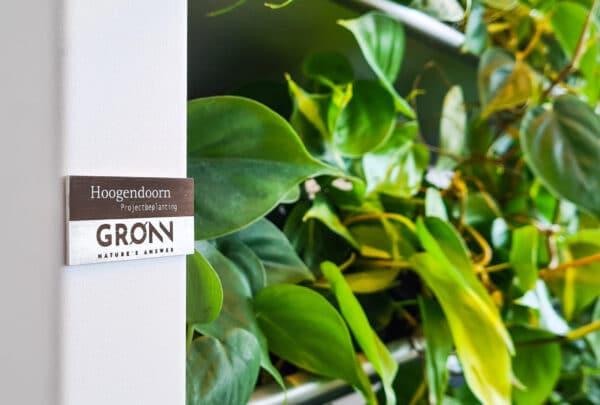 Gronn Eple wit met Hoogendoorn plaatje bij Prime Pitch (3)