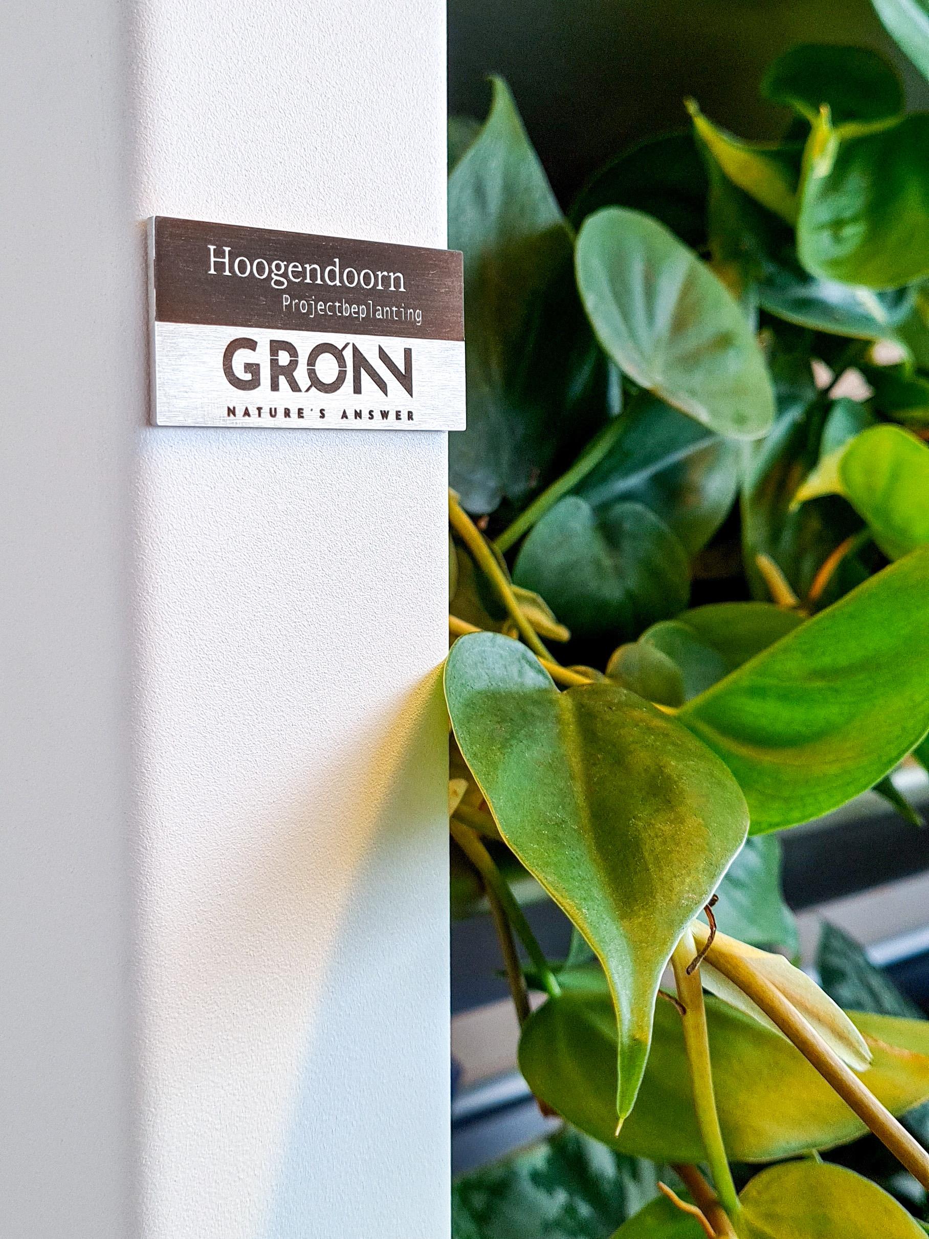 Gronn by Hoogendoorn