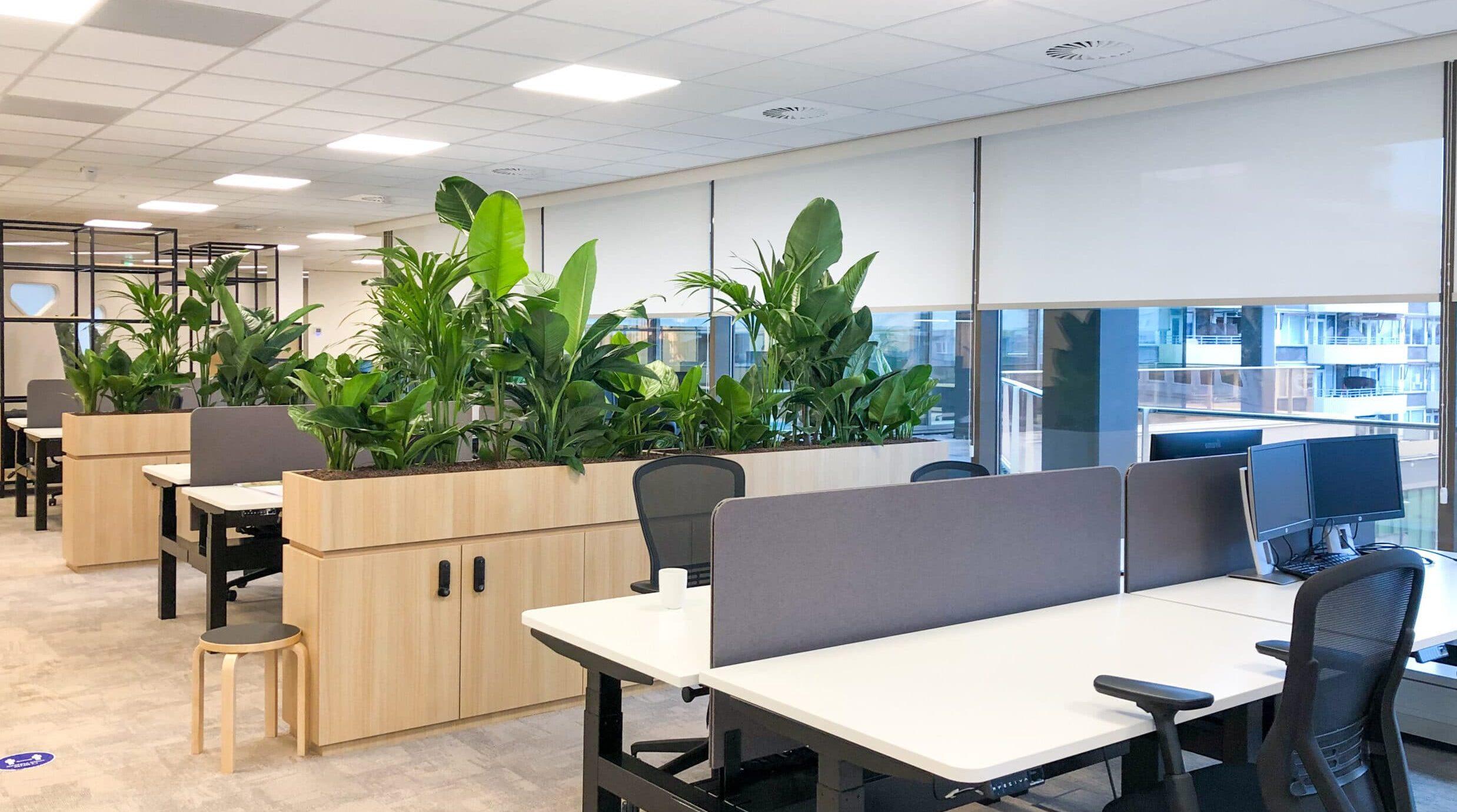 Urban jungle beplanting in maatwerk plantenbak roomdivider