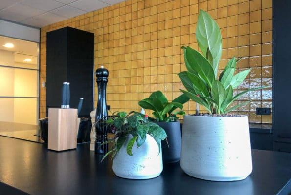 Kantoorbeplanting bij The Cookware Company