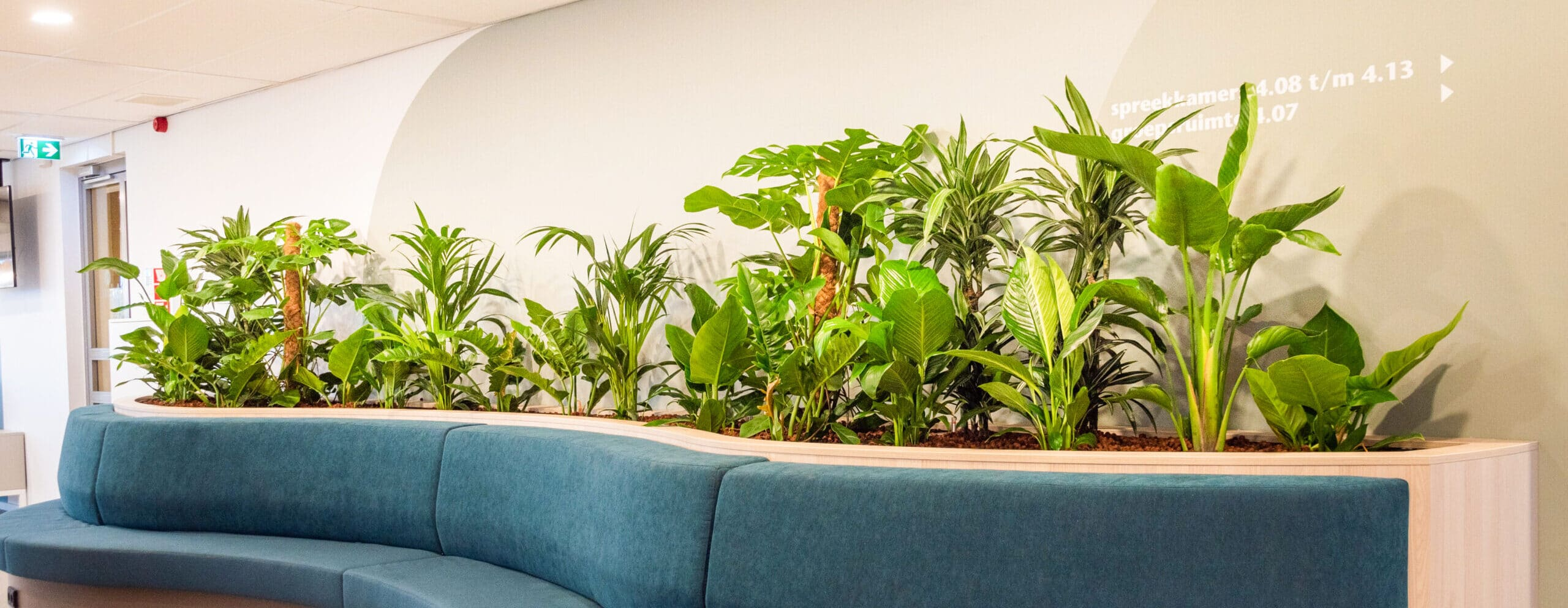 Luchtzuiverende planten bij zorginstelling Arkin